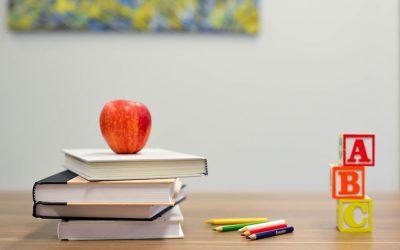 Guadagnare Insegnando Online: 5 Passi per Vendere le tue Competenze sul Web