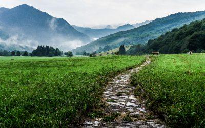 Path to Purchase: Cos'è e come ottimizzare il processo di acquisto degli Utenti
